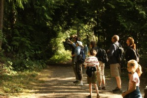 birding, bird watching, kids in nature, Pine Ridge Park, Edmonds