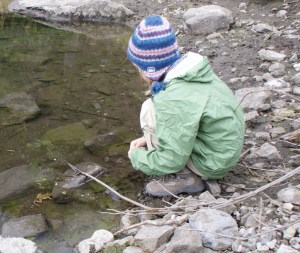 kids in nature, kids and frogs, amphibians washington