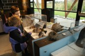 Brigthwater treatment plant, nature education, environmental education,