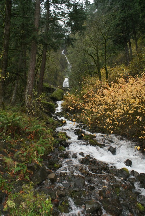 Columbia River Gorge, waterfalls, rainy day hikes, hiking with children