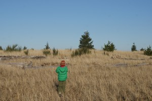 birding with children, kids in nature, kids photography, damon point, ocean shores washington