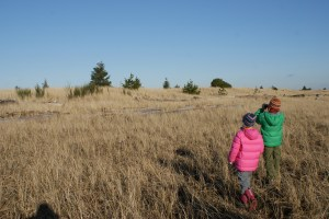 birding with children, kids in nature, snowy owls, damon point, ocean shores