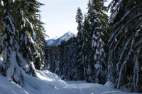 smithbrook road, snowshoeing stevens pass