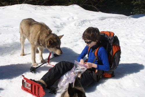 kids and dogs, hiking with dogs, snowshoeing with children, kids in winter
