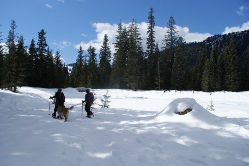 Gold Creek, snowshoeing with children, winter hiking