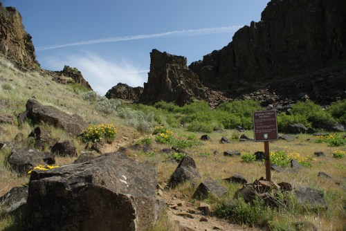 columbia hills state park, horsethief butte, spring hikes washington