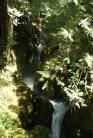 Newhalem, hiking with children, highway 20 hiiking, waterfall