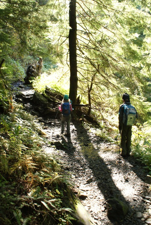 hiking with children, kids, forest, mountain loop highway, fall hikes