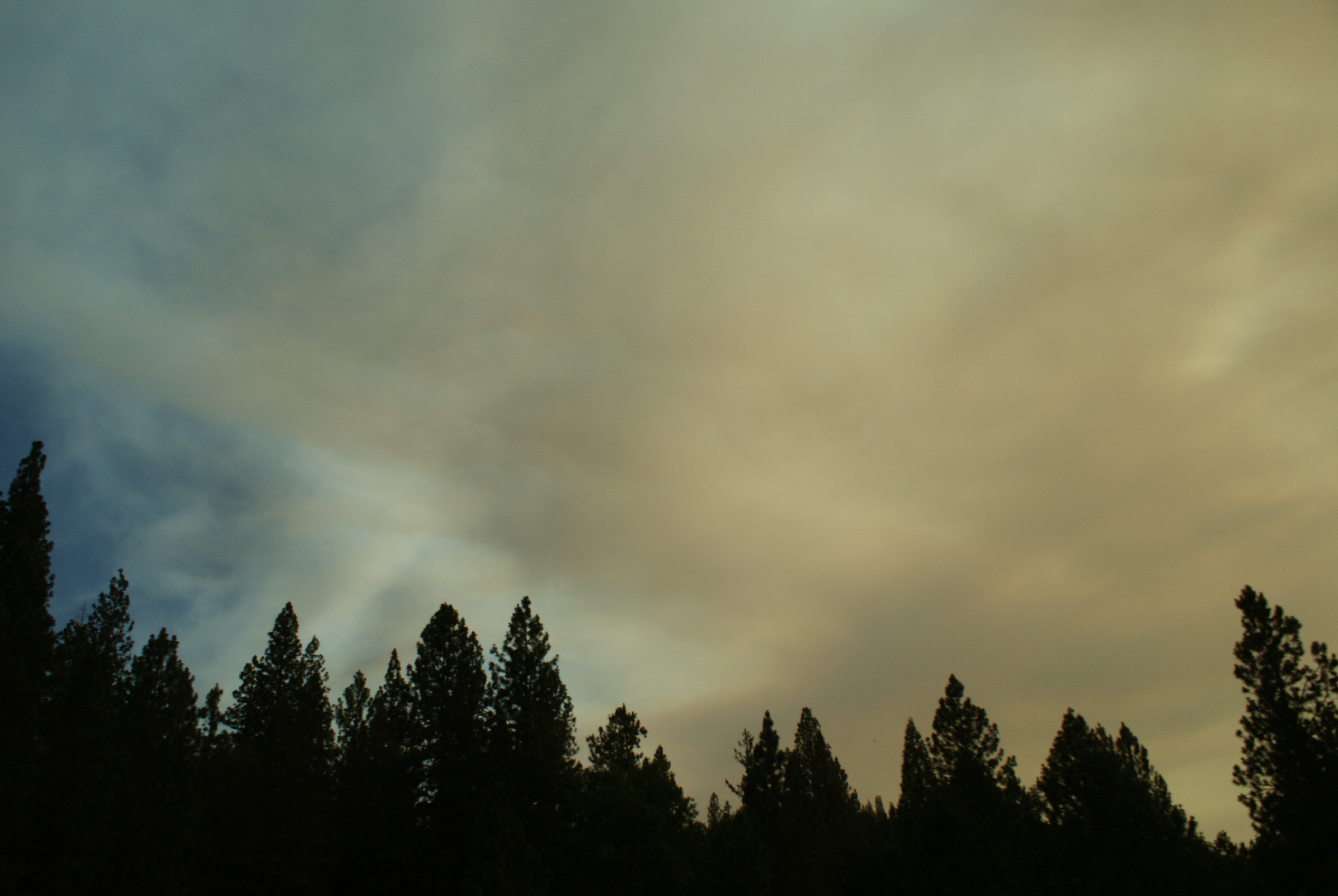 forest fires CA 2014