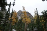 larches, north cascades, blue lake trail, hiking with children