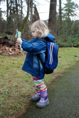 seward park, seattle hikes for kids, nature walk