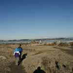 birding camano island, winter birding washington, bird watching with children