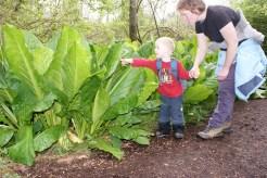 mercer slough, hiking with children
