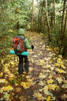 sugarloaf, anacortes, kids hiking