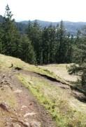 anacortes community forest land, sugarloaf