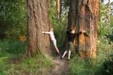 kids hugging trees