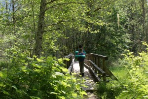 hiking with children, hikes near Darrington, spring, fall