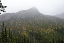 fall hiking, best hikes for kids, cutthroat lake, larches, north cascades