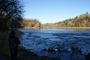 ridgefield nwr, carty unit, vancouver, winter hiking, birding with kids