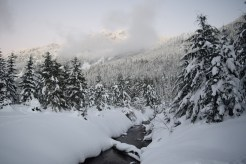 gold creek pond snowshoe, winter hiking with kids