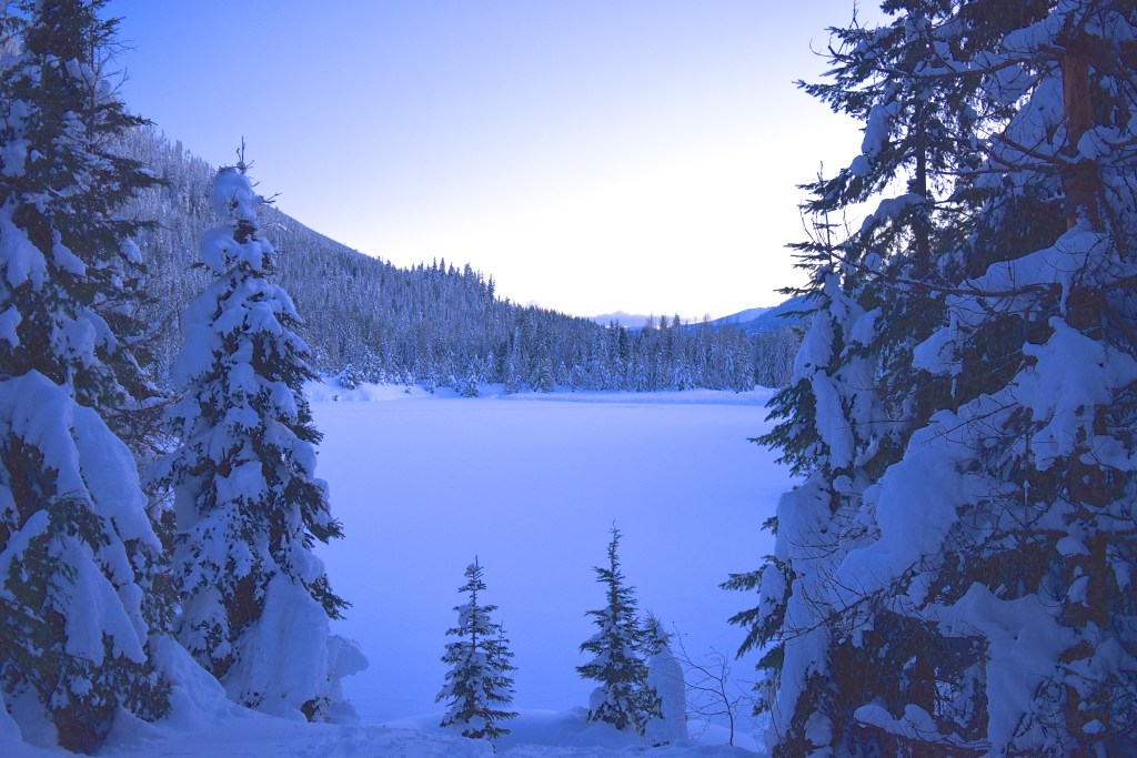 gold creek snowshoe, winter hikes, snowshoeing with children