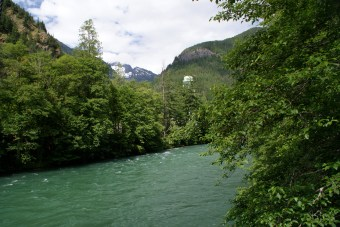 trail of the cedars, old growth hikes, hikes for kids, north cascades national park, best hikes for kids