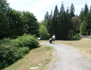 boeing creek park, shoreline parks, hiking with children, urban hikes