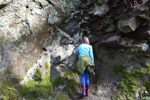 nw geology, sehome hill arboretum, hiking with kids, spring, nature walk, bellingham