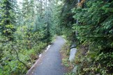 highway 20, north cascades, hikes for kids, rainy pass