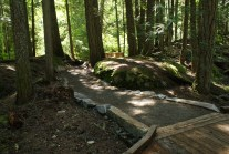 Happy Creek Nature walk, north cascades, highway 20 hikes, best hikes for kids, summer