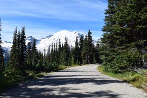 mount rainier, burroughs trail, shadow lake, sunrise, hikes for kids, fall hiking