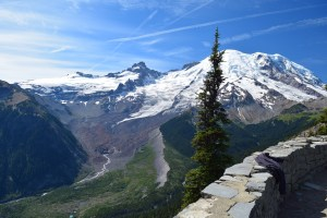 sunrise area trails, burroughs loop, best hikes for kids, fall hiking, glacier, white river,
