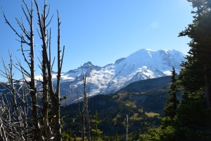 mt rainier, sunrise, sourdough ridge, fall hiking, best hikes for kids