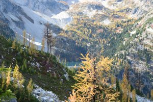 best hikes for kids, heather maple pass trail, fall color, larches, north cascades