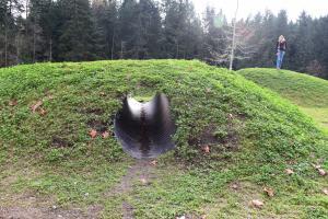 sammamish parks, nature play area, natural playground