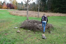 big rock park, sammamish, kids in nature, pretend play, natural play area
