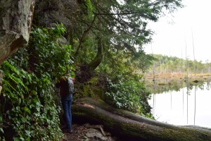 little cranberry lake, winter hiking, anacortes community forest land, winter hiking,