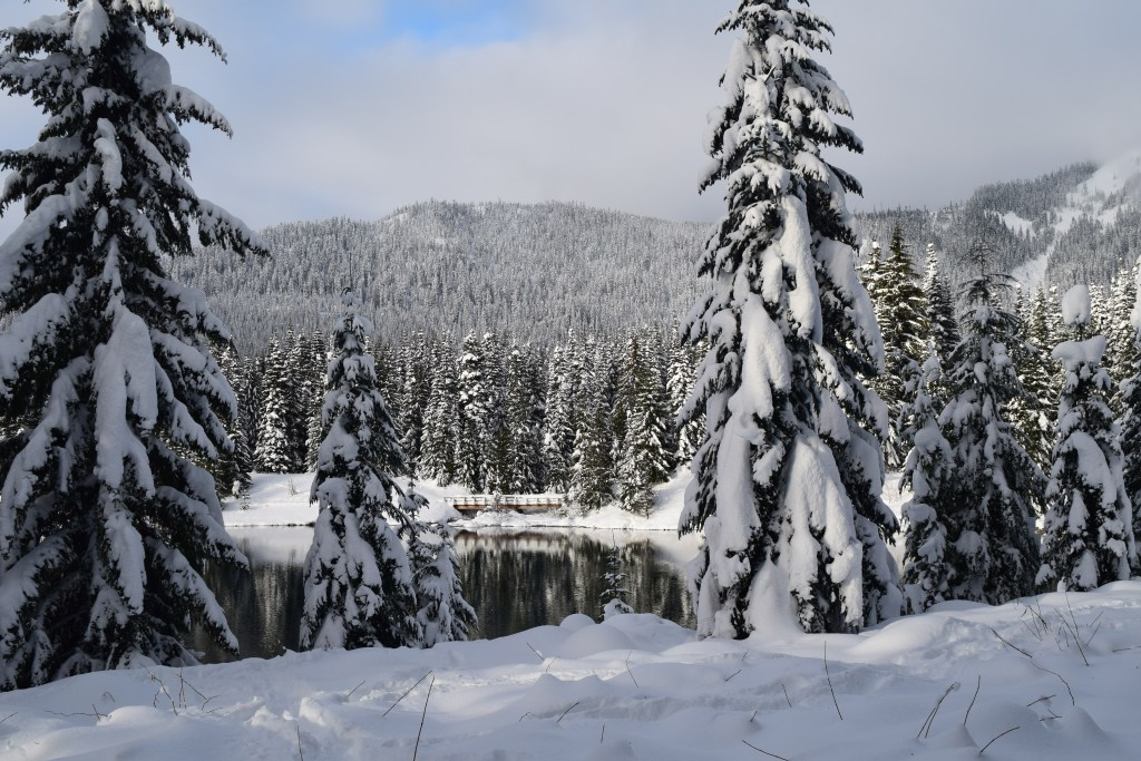snowshoeing, gold creek pond, winter, best hikes for kids,