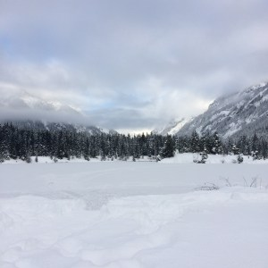 gold creek, snowshoe, hikes for kids, winter,