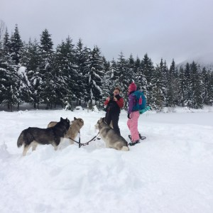 winter, snowshoe, hiking, dogs, kids in nature, kids snowshoeing, gold creek pond