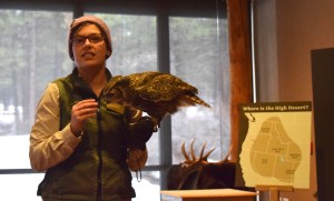 great horned owl, central oregon, high desert museum, bend, activities for kids