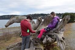 semiahmoo spit, hikes for kids, blaine, washington, nature walks