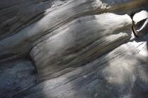 rock trail, geology, larrabee state park, washington, hikes for kids