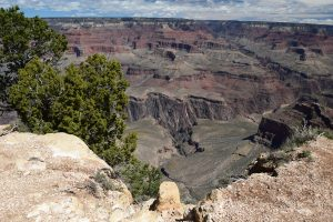 grand canyon national park, arizona, south rim, colorado river, geology, travel with kids, spring break