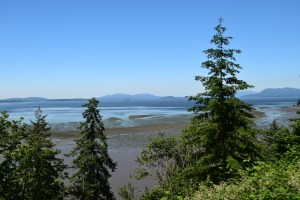 padilla bay, salish sea, anacortes, whidbey, fidalgo,
