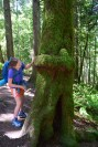 larrabee state park, best hikes for kids, fragrance lake trail, summer hiking kids in nature