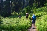 blue lake, mt baker, hiking with kids, best hikes for kids, summer, fall,