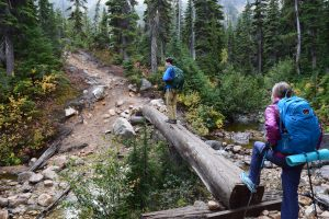 north cascades, cutthroat lake trail, hikes for kids, fall hiking, larches,osprey packs, rei pack, solomon trail runners
