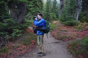 hikes for kids, fall hiking, cutthroat lake trail, north cascades