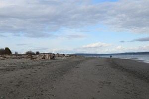 point no point county park, sandy beach, puget sound, kitsap peninsula,